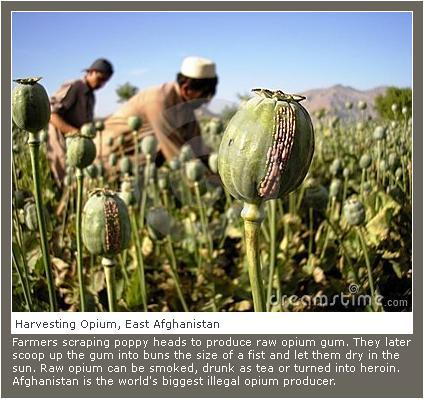 Afghanistan, 2007